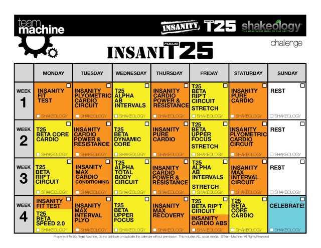 InsaniT25 Calendar