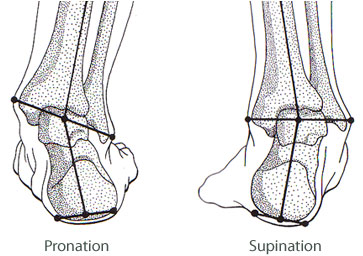 pronation-supination (1)